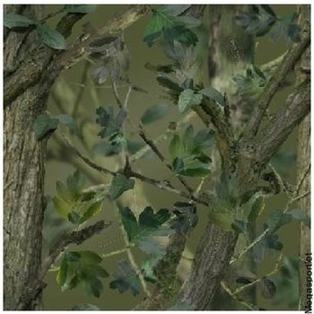 Camo-it vinyyliteippi, Woodland Green