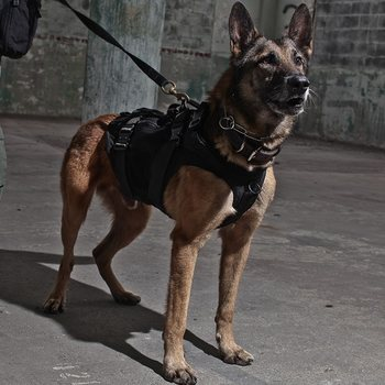 LBT Tactical K9 Harness