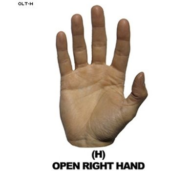 Law Enforcement Targets Open Right Hand Hand Overlay